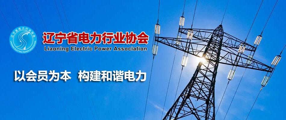 为主的电力能源结构
